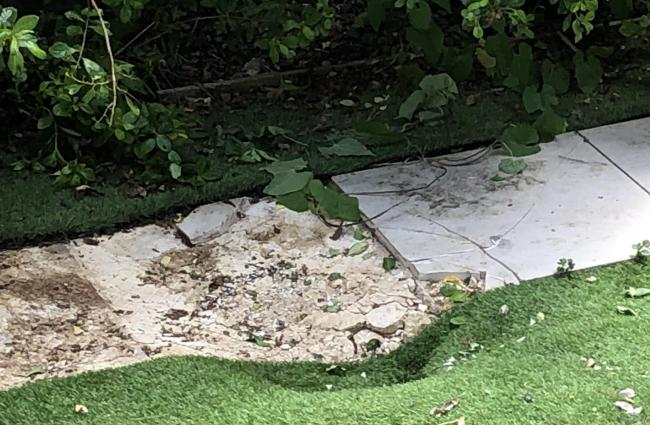 The force of the body falling from a commercial airplane dented paving slabs and astro-turf in a garden in Clapham