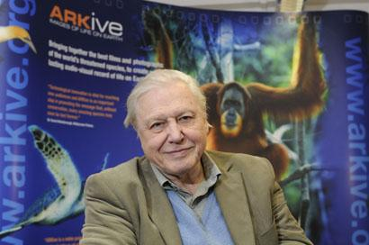 Wandsworth Times: Sir David Attenborough (ARKive)