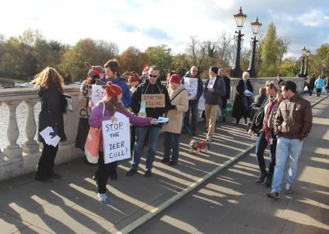 Activists protest deer cull
