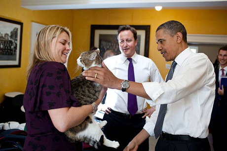 Former Battersea Dogs' Home resident Larry the Cat caught his first mouse at No.10 Downing Street in September