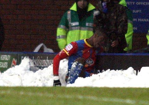 It's snow life: Wilfried Zaha takes time out to frolic in the wintery drift      SP72943