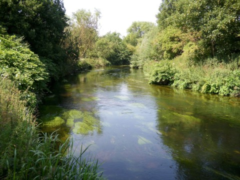 Development: River Wandle