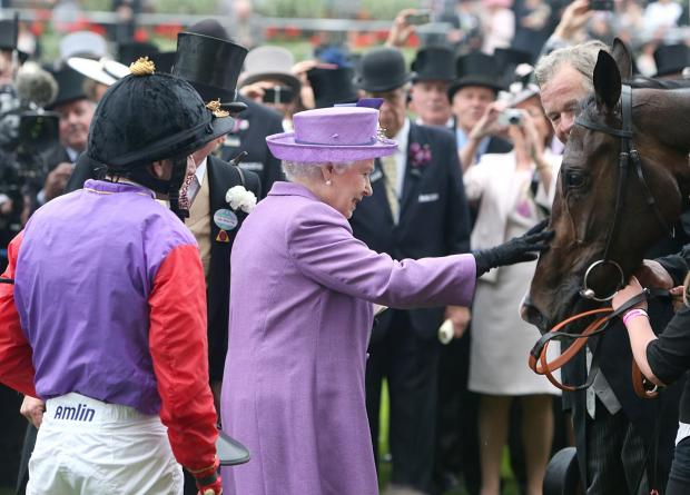Wandsworth Guardian: Queen Elizabeth II pats her horse Estimate after it won the 2013 Gold Cup ridden by jockey Ryan Moore