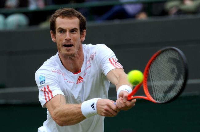 Wimbledon champion 2013: Andy Murray