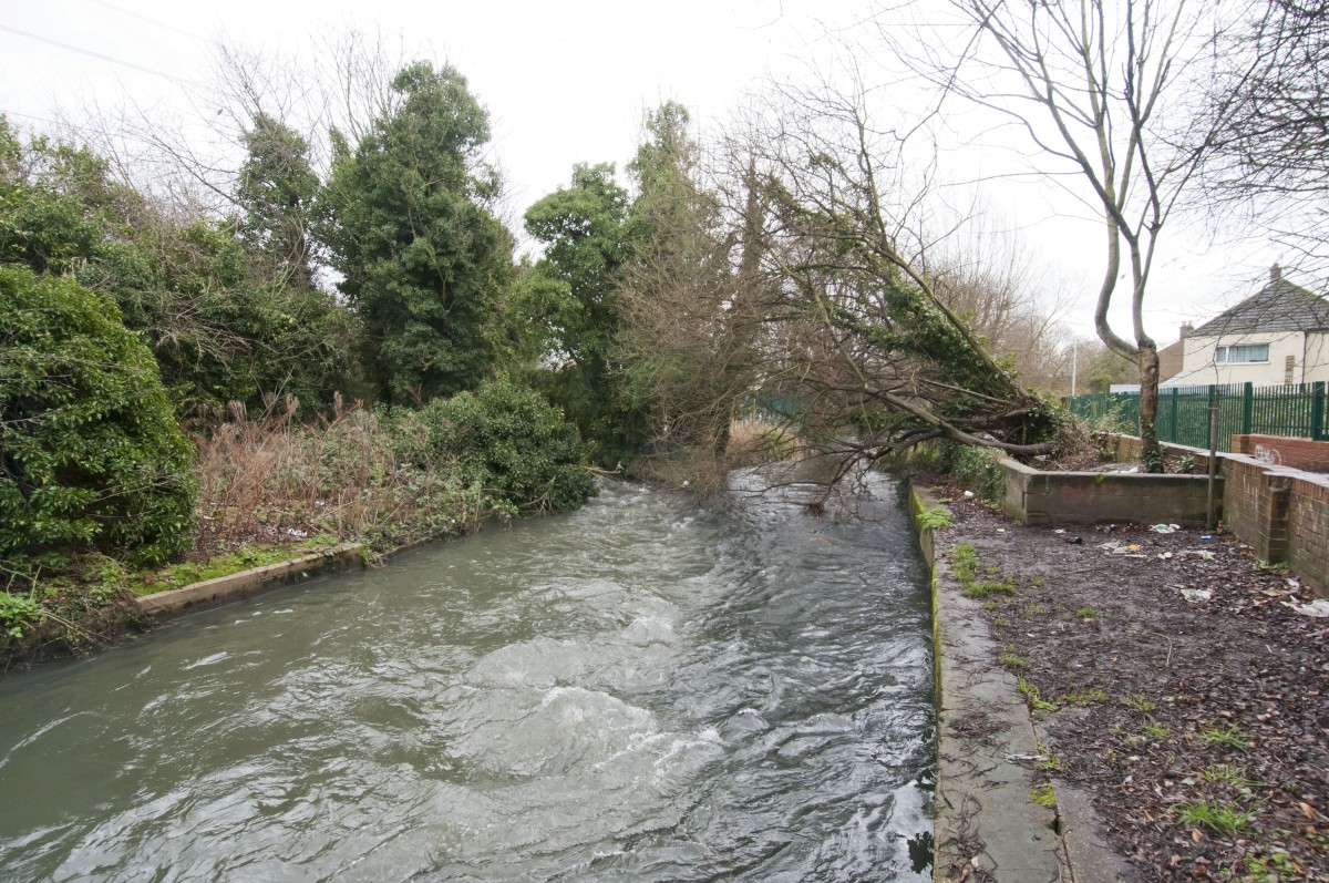 Concerns after sewage released into River Wandle