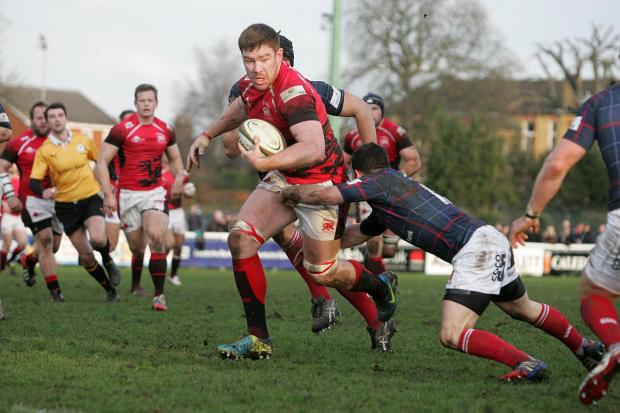 Wandsworth Guardian: Winning return: London Welsh's Ollie Stedman in action against London Scottish 	SP81887