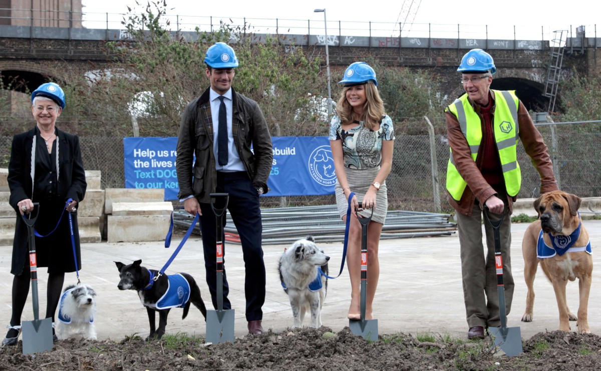 The celebs laid the first stone in the new kennels with some help from their canine pals