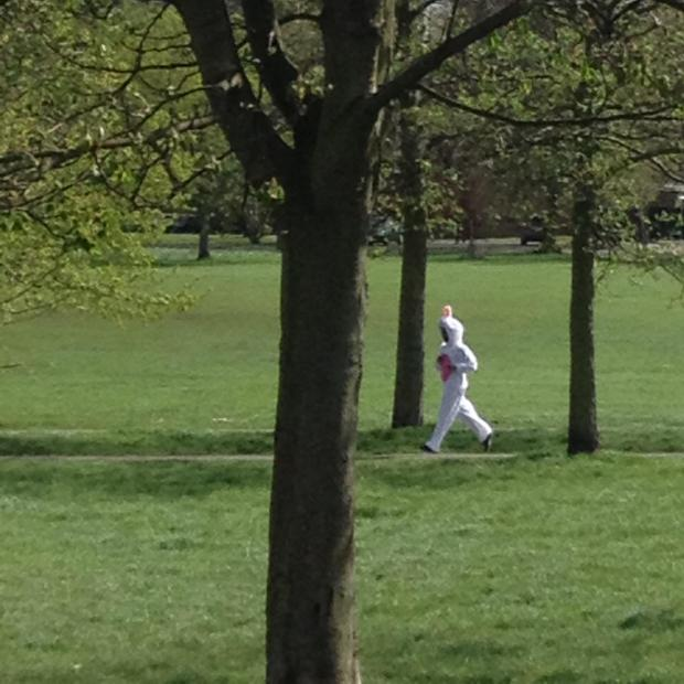 Wandsworth Guardian: Something bunny going on in Clapham Common