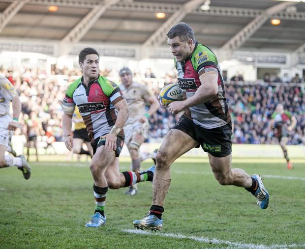 Wandsworth Guardian: Going strong: Quins veteran Nick Easter still has plenty to offer on the pitch