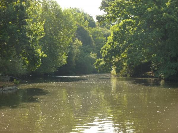 Tooting Common used to be farmland