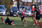 Coming through: Luke Carter for Rosslyn Park        All pictures: David Whittam