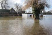 Misery: Weybridge Vandals cricketers feared 2014's season would be a write-off with the club underwater in February