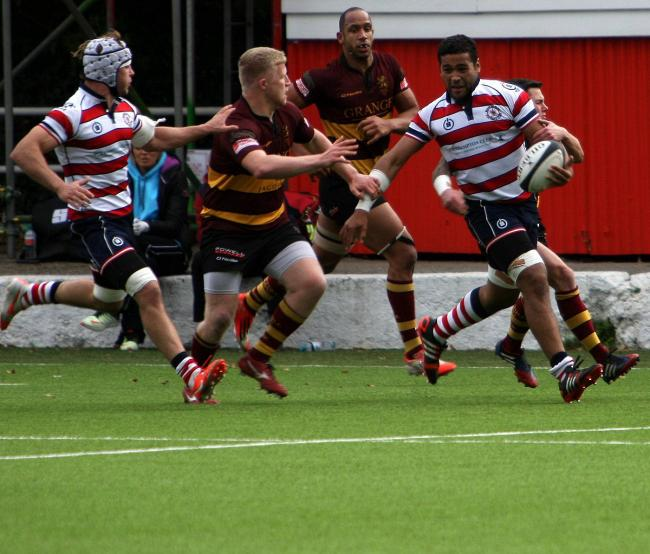 Break out: Ed Milne in action for Rosslyn Park against Ampthill               Pictures: David Whittam