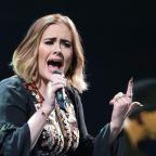 Wandsworth Guardian: Adele uses Wembley gig to urge fans to donate to Grenfell Tower survivors