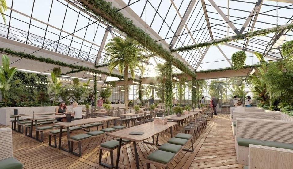 An artist's impression of what the Palmhouse could look like